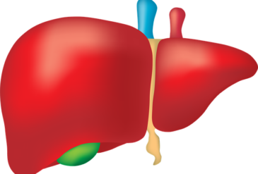 Natural Solutions for: Liver Cleansing and Support
